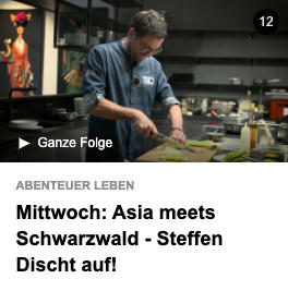 kabel_1_asia_meets_schwarzwald_2021